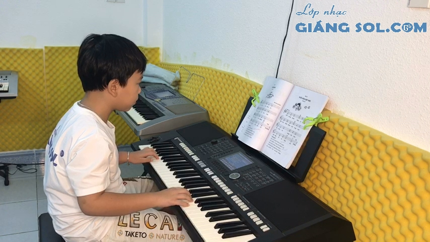 Dạy Đàn Organ Quận 12    Con Chim Ri, lớp học đàn organ quận 12, trung tâm dạy đàn organ quận 12, dạy đàn piano quận 12, dạy đàn guitar quận 12